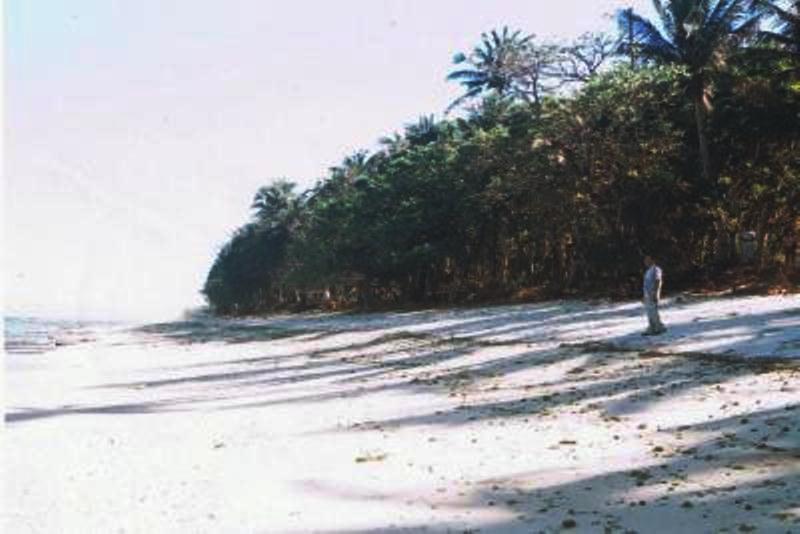 Saud-beach-lot-for-sale