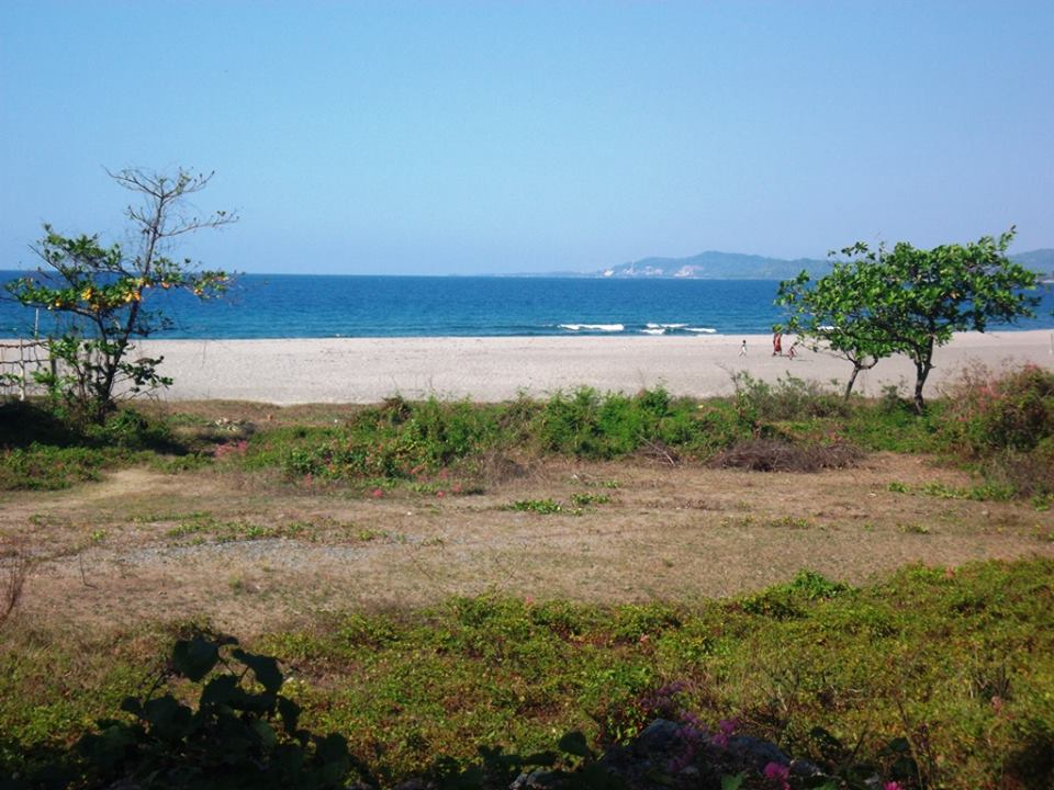 1 500sq m beach lot for sale with 20m frontage in san for Beach property philippines
