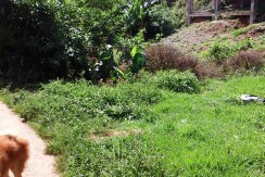 baguio-residential-forsale-philippines-253 sqm (3)