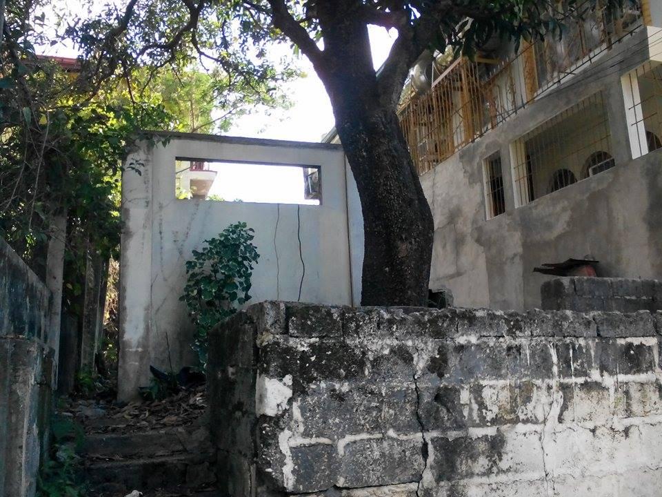 sfc- pagdaraoan - lot for sale (6)