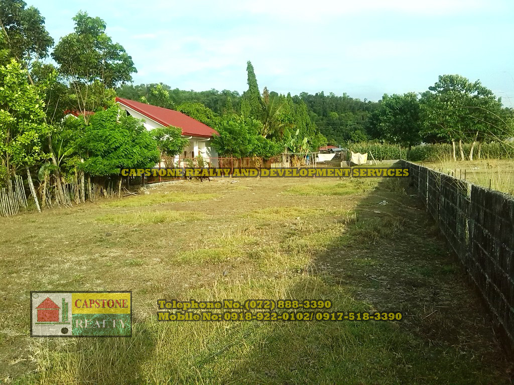 2,646 Sqm Beach Lot For Sale in Bauang La Union, Ilocos Philippines (SOLD)