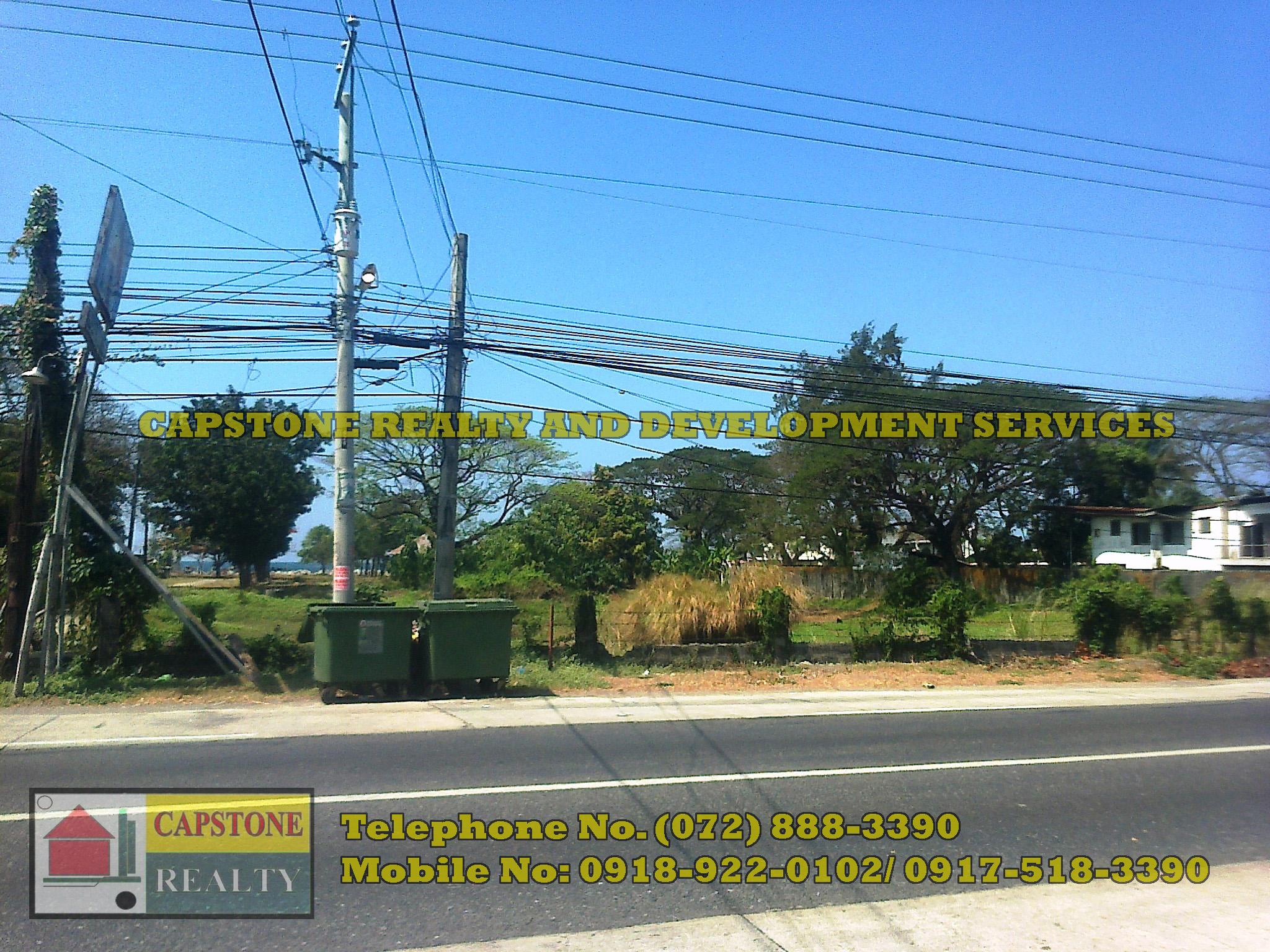 1 Hec Beach lot property for sale in Paringao Bauang La Union, Ilocos (SOLD)