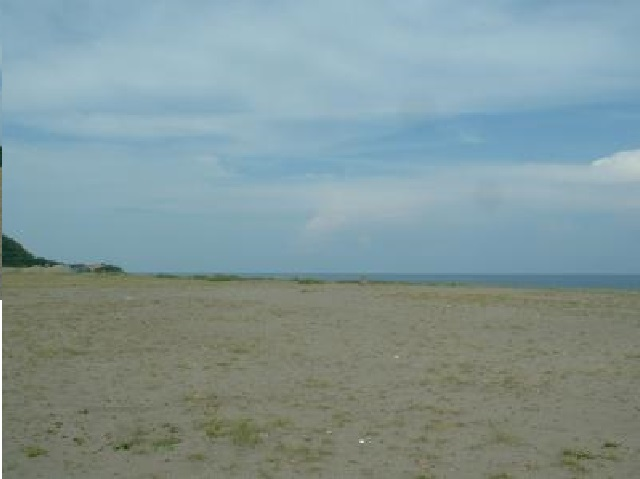 Beach lot for sale, 5.1 Hec. San Juan Ili Norte, La Union, Ilocos