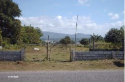Residential lot for sale 3,002 sqm, Bacnotan, Bulala