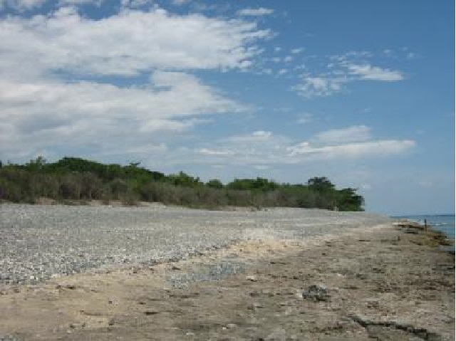 Beach property for sale in luna nalvo sur 1 1 hec for Beach property philippines