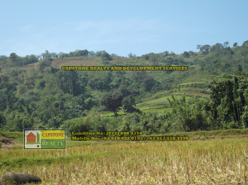 52 Hectares titled property for sale, Bauang, La Union, Ilocos