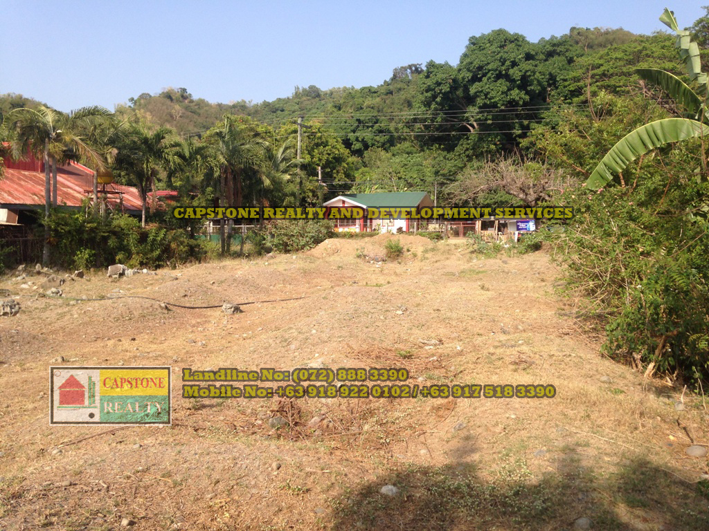 Titled Commercial / Residential Lot for sale Caba, La Union, Ilocos (SOLD)