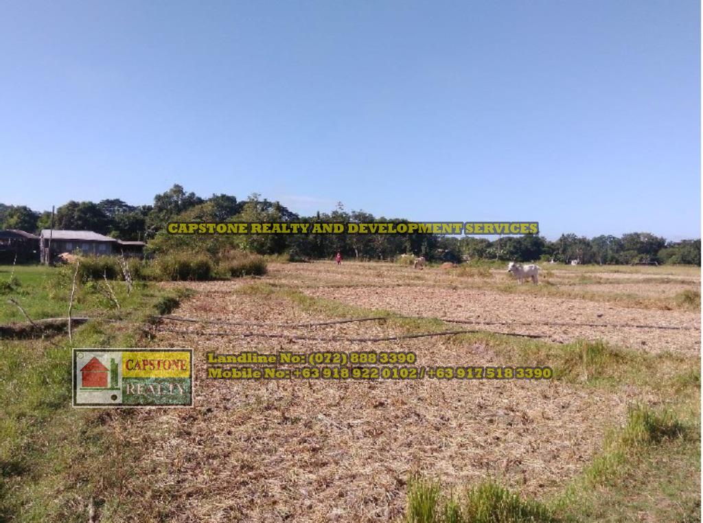 Farm Lot for Sale, Bacnotan, La Union, Ilocos