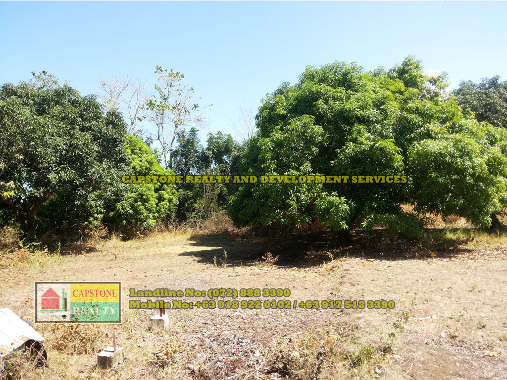 RUSH SALE Residential/Agricultural Lot in Bauang, La Union – 2,752 sqm