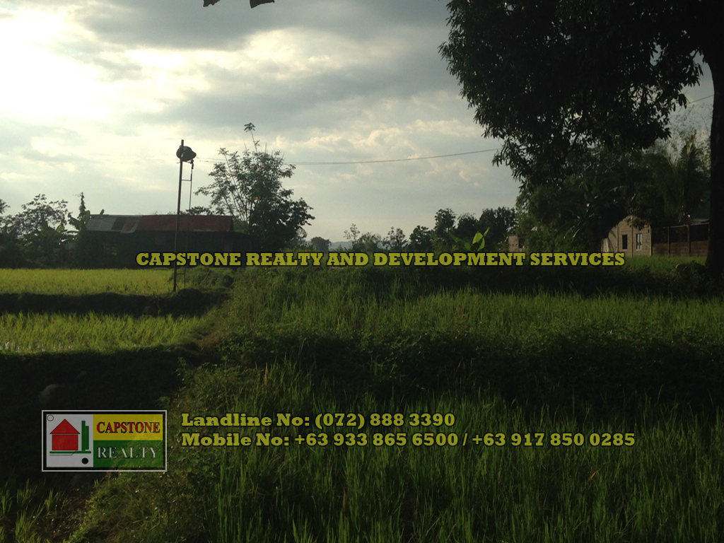 2,025 Sqm Agricultural lot for sale, Rosario, La Union
