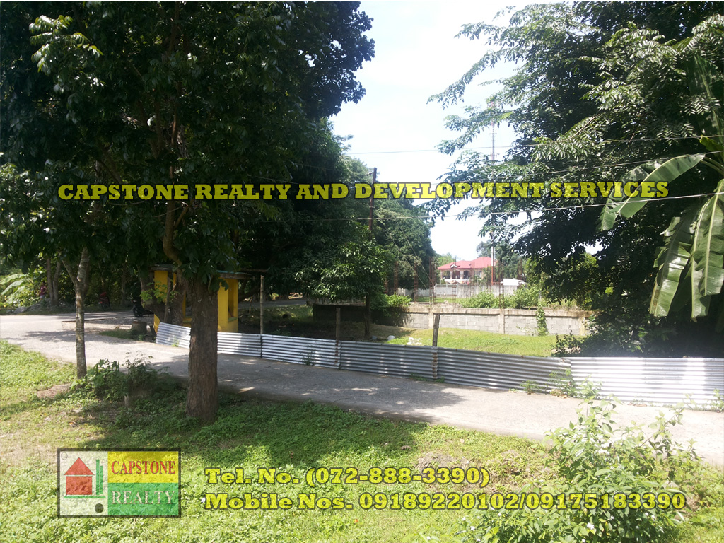 Residential / Agricultural lot for sale, Bacnotan, La Union