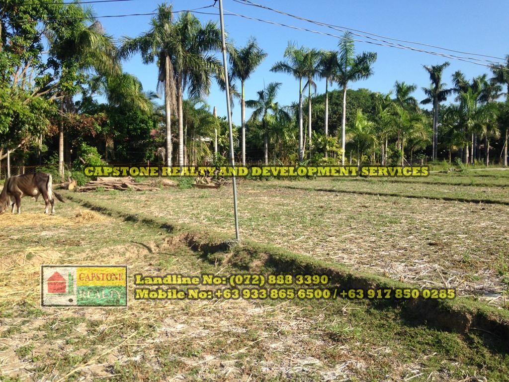 Titled Farm / Agricultural lot for sale, Bacnotan, La Union
