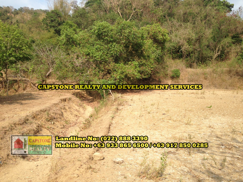 Agricultural Lot For Sale, Bauang, La Union (SOLD)