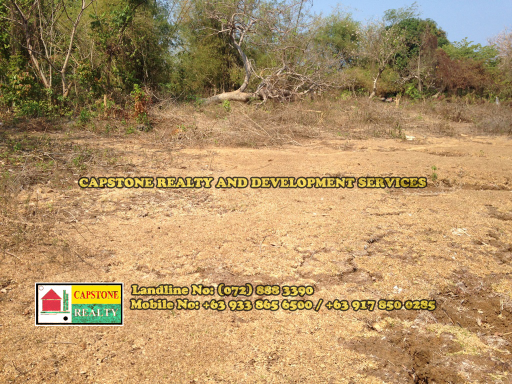 217 SQM Residential lot for Sale, San Fernando City, La Union