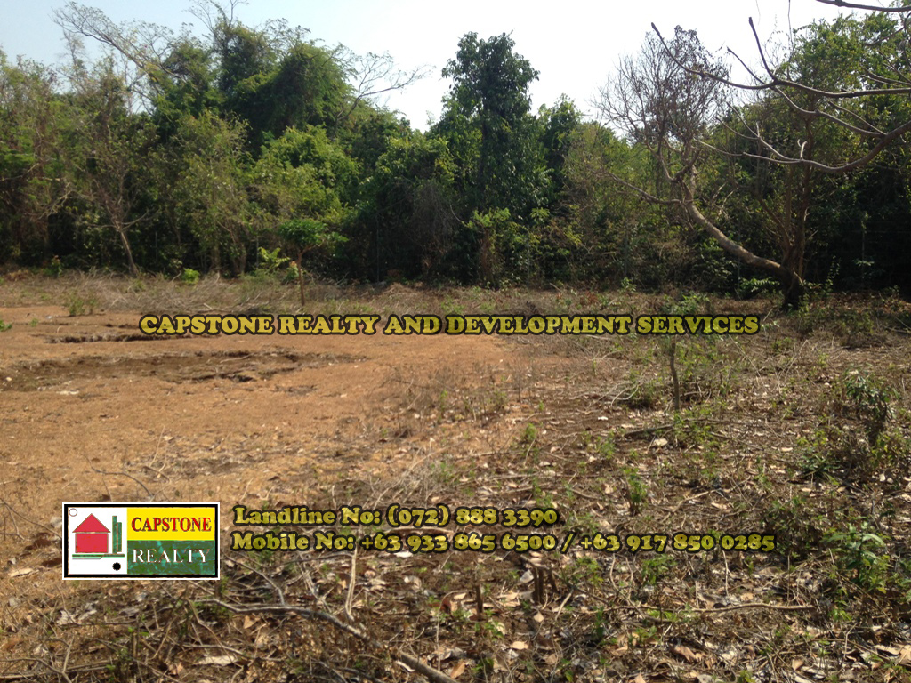250 SQM Residential Lot for Sale, San Fernando City, La Union