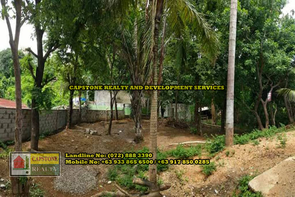 Titled Commercial / Residential lot for Sale, San Fernando City, La Union