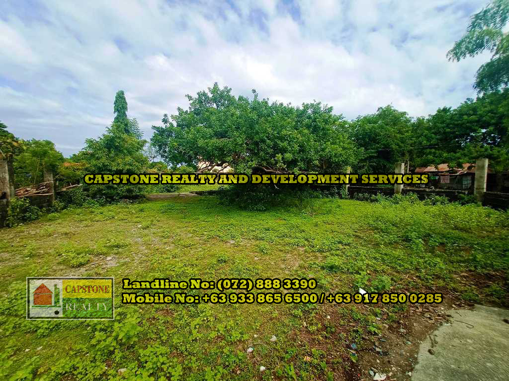 Subdivided Residential Lots for Sale, Bacnotan, La Union