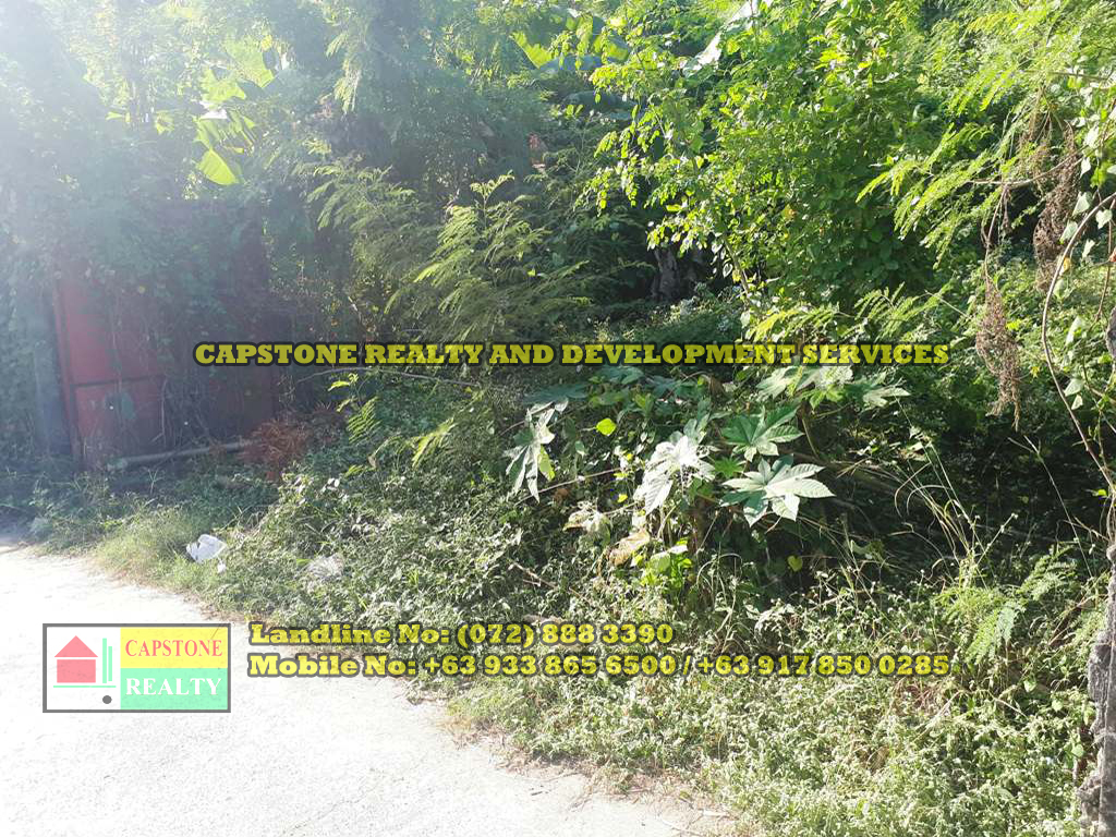 300 SQM TITLED Residential lot for sale, San Fernando City, La Union (SOLD)
