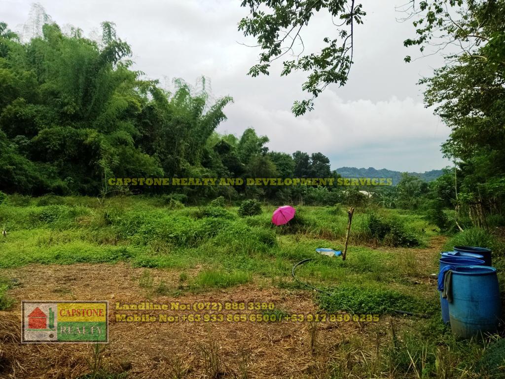 1 hectare lot for sale San Fernando City, La Union
