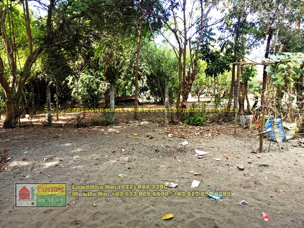 Titled Residential lot for sale Bacnotan, La Union