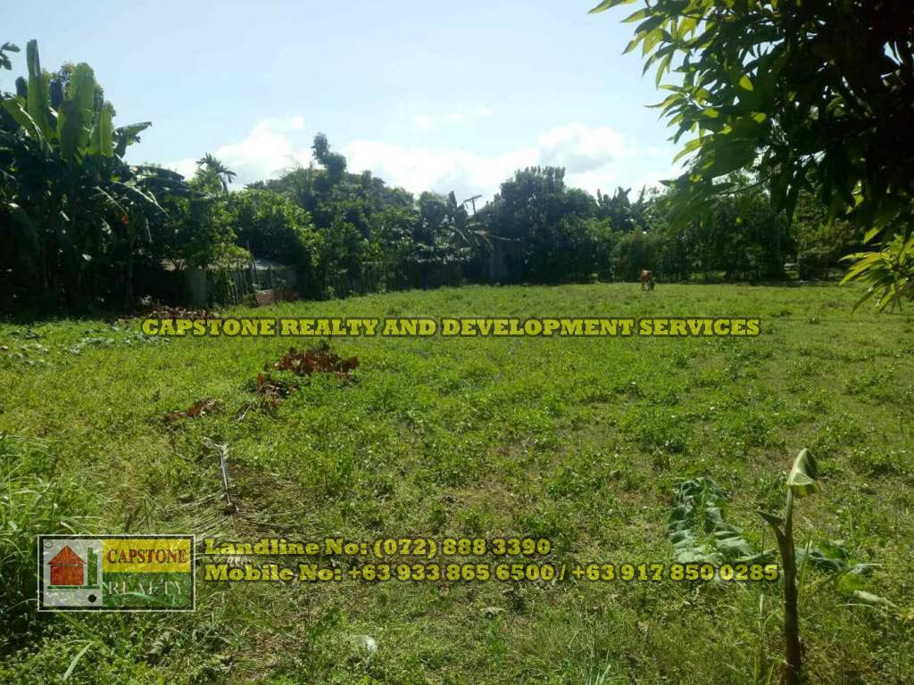 4,627 Sqm lot for sale Poblacion, Bacnotan, La Union