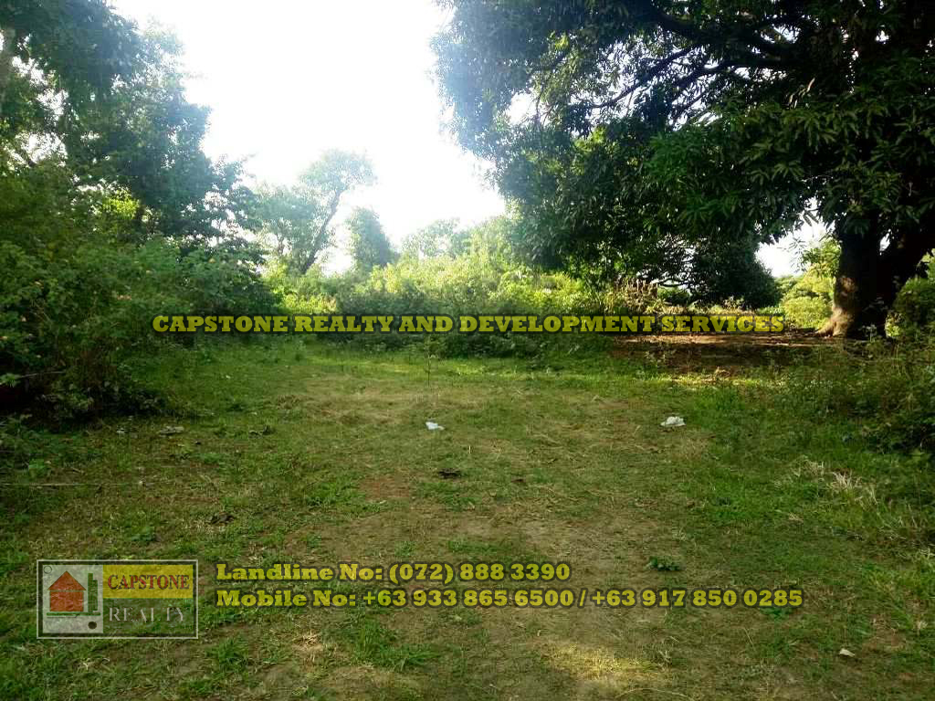 Titled Residential Lots for Sale, San Fernando City, La Union