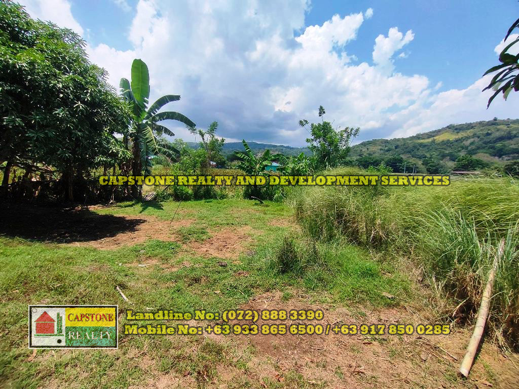 1 Hectare Titled Agricultural Lot for sale Balaoan, La Union